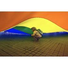 Thumb_homofobia1