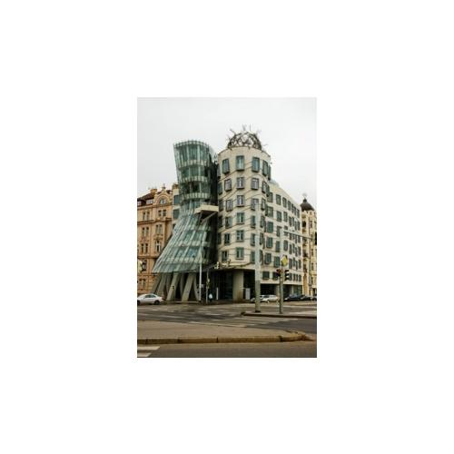 Normal_dancing_house