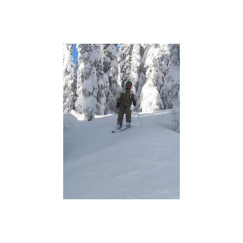 Normal_ski