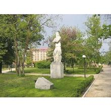 Thumb_1._svilengrad