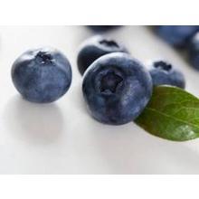Thumb_blueberries
