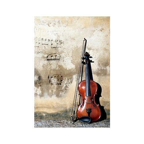 Normal_street_player_cello_0