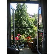 Сезонните цветя на балкона