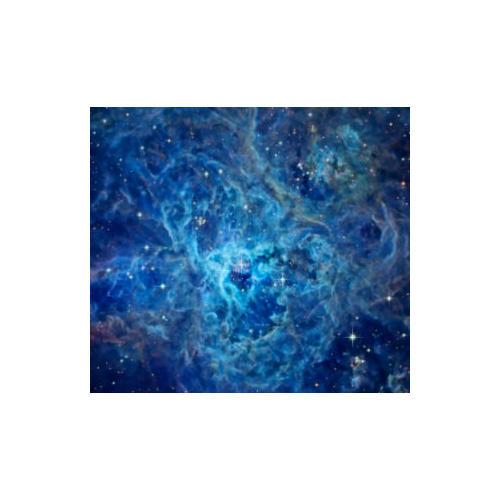 Normal_cosmos