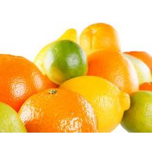 Thumb_citrus