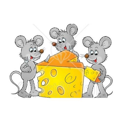 Normal_mice_cheese