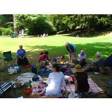 Thumb_picnic_xora