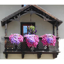 Thumb_floer_balkon