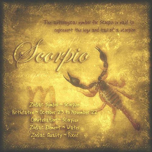 Normal_scorpion