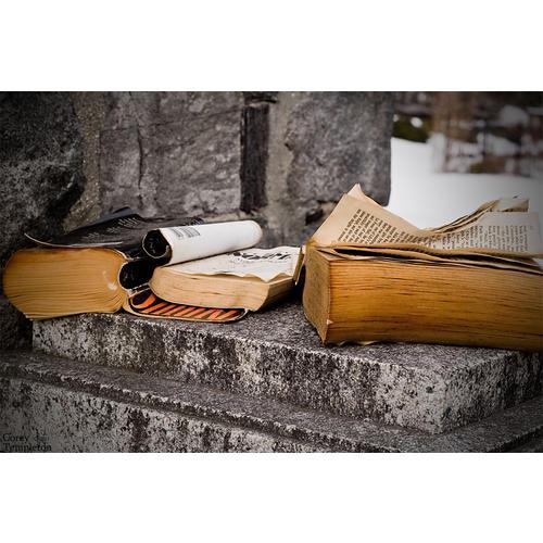 Normal_books