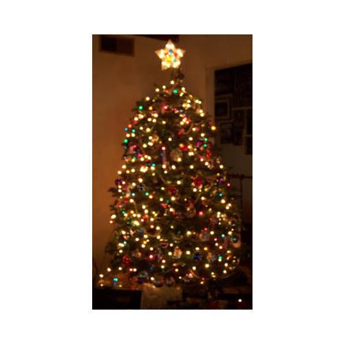 Normal_xmas_tree_at_night_r_use