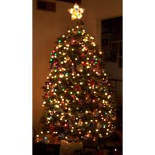 Thumb_xmas_tree_at_night_r_use