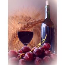 Thumb_wine__grape