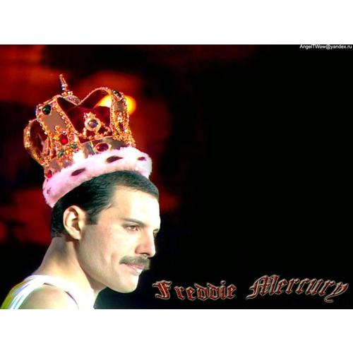 Normal_freddie-mercury