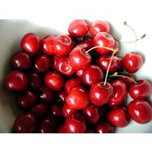 Thumb_cherry_sweet_fruts