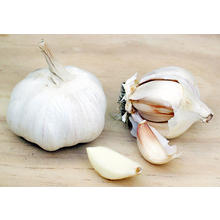 Thumb_garlic