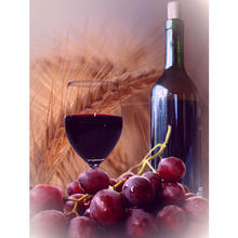 Thumb_wine__grape