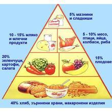 Thumb_%d0%bf%d0%b8%d1%80%d0%b0%d0%bc%d0%b8%d0%b4%d0%b0_%d0%bd%d0%b0_%d1%85%d1%80%d0%b0%d0%bd%d0%b5%d0%bd%d0%b5%d1%82%d0%be