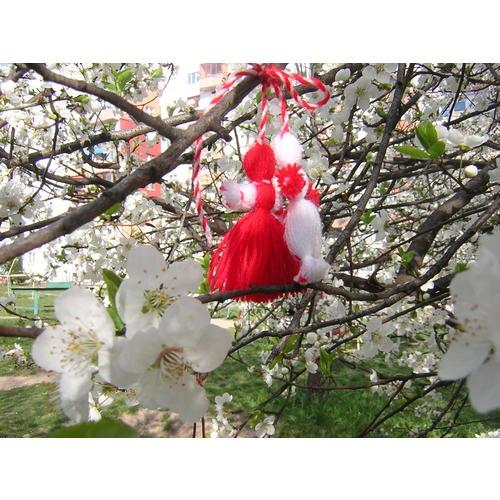 Normal_martenitsa-blossom.jpg