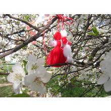 Thumb_martenitsa-blossom.jpg