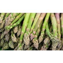Thumb_asparagus