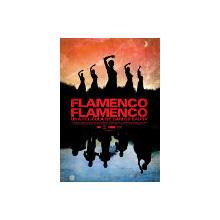 Thumb_flamenco_flamenco_poster