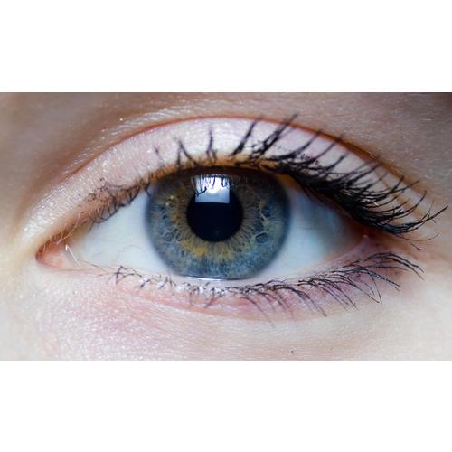 Normal_eye