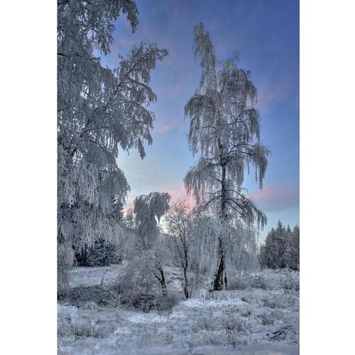 Normal_zimno