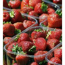 Thumb_strawberries-505019_640