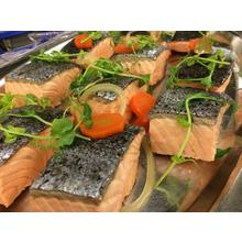 Thumb_cold-preserved-salmon-1102953_1280