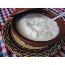 Thumb_bulgarian_yogurt.jpg