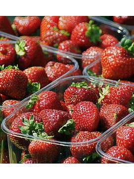Normal_strawberries-505019_640