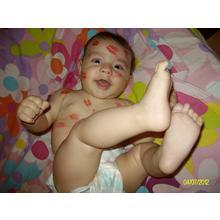 Thumb_alim7620.jpg