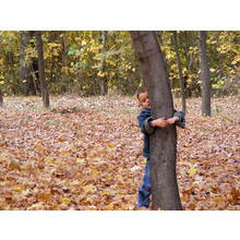 Thumb_fall_in_north_park-090