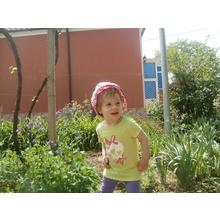 Thumb_p5050955__1024x768_