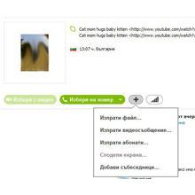 Thumb_skype_1.jpg